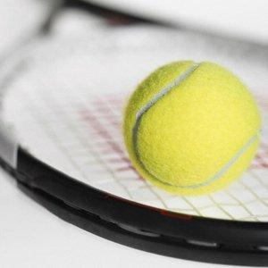 20110331224145-1282558844-115264105-1-fotos-de-profesor-de-tenis-con-experiencia-1282558844.jpg