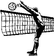 20110515141534-voleibol.jpg