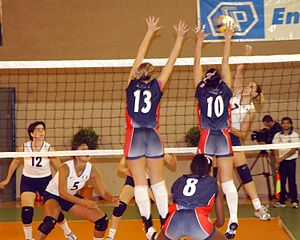 20151015163826-300px-volleyball-game.jpg