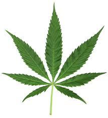 20160508140327-las-drogas.jpg